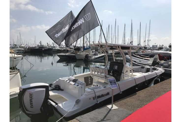 bateau WELLCRAFT 242 Fisherman occasion Alpes Maritimes - PACA   83 990 €
